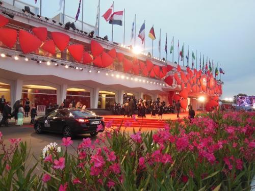 V15.Il tappeto rosso 2014 (1)